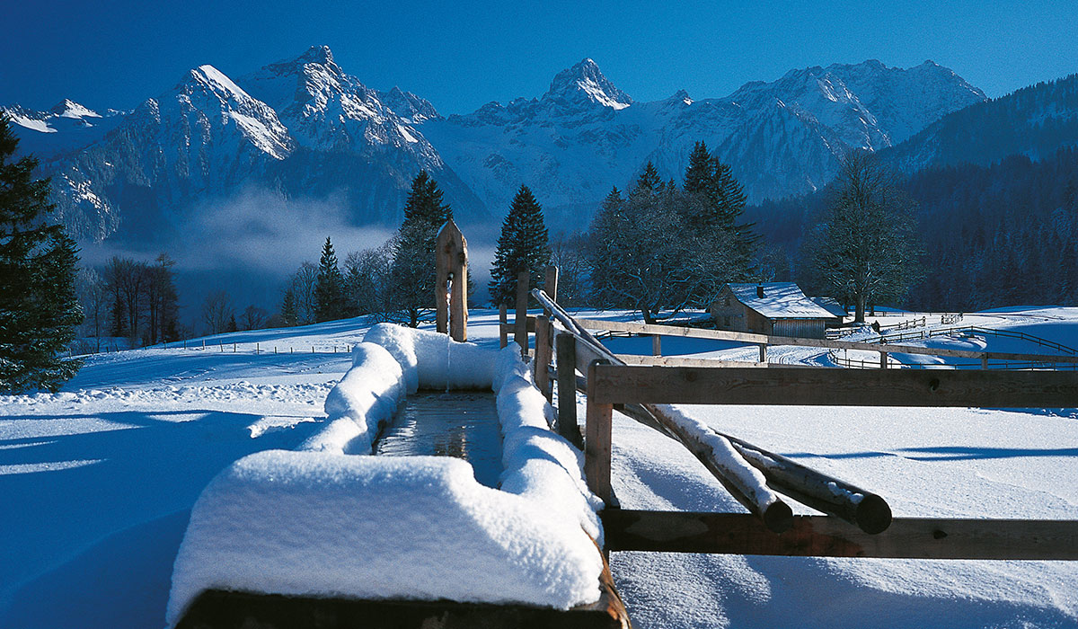 winter_offer02